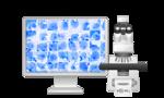 Vision Cyto STD® диагностика ЗППП